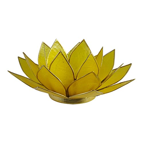 - The Crabby Nook Lotus Tea Light Candle Holder Capiz Shell Decorating Accent Home Decor (Yellow)