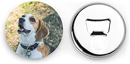Abrebotellas, Retrato del perro Beagle al aire libre en la hierba Abridores de vino, Imanes de nevera, Abrebotellas con una sola mano Sacacorchos 2 piezas