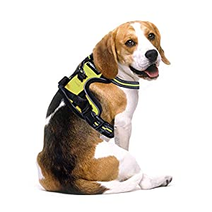 Rabbitgoo No Pull Dog Harness Adjustable Pet Vest Harnesses with Handle, Easy Control Front Walking Harness with 2 Metal Leash Clips, Reflective Dog Vest Comfortable Padded for Large Medium Small Dogs