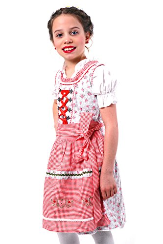 Adorable and Authentic German 3 PCS. Dirndl, Summer, Spring Dress Outfit for Girls in Red and Grey Size 6 -