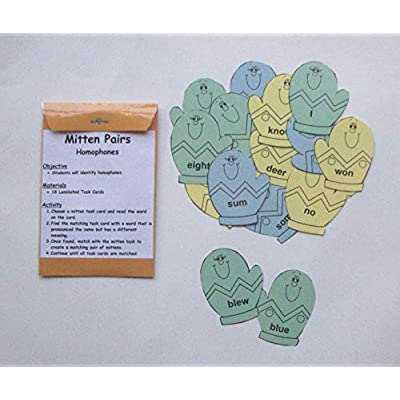 Teacher Created Literacy Center Educational Resource Learning Game Identifying Homophones: Toys & Games
