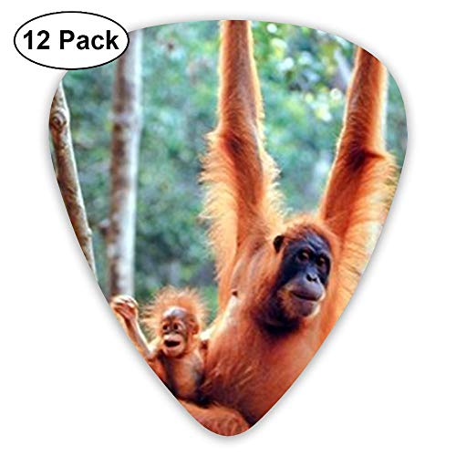 JSYAGSJ Guitar Picks Variety Pack Electric Guitar Printed Orangutan Baby Waving Monkey Pattern 12 Pack ()