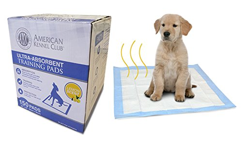Image of American Kennel Club Lemon Scented Training Pads in Box (150 Pack)