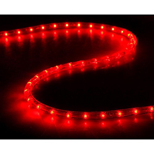 Yescom 2x150ft Red 2 Wire LED Rope Light Indoor Outdoor Home Holiday Valentines Party Restaurant Cafe Decor by g (Image #4)