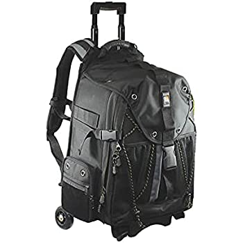 Amazon.com : Ape Case, ACPRO4000, Backpack with wheels, Laptop ...