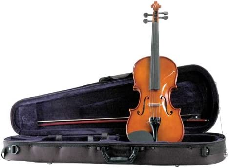 Amazon Com Palatino Vn 450 Allegro Violin Outfit 4 4 Size Musical Instruments