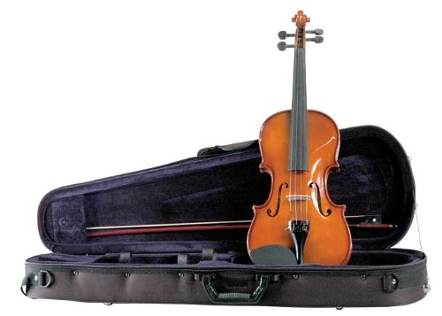Palatino VN-450 Allegro Violin Outfit, 4/4 Size