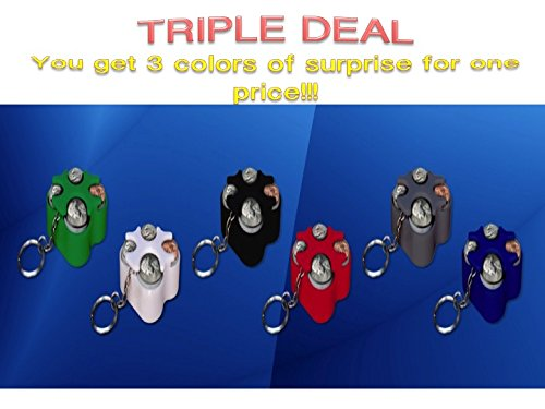 Key Chain Coin Holder, Coin Organizer, Us Coin Holder 3pcs Mystery Colors Special