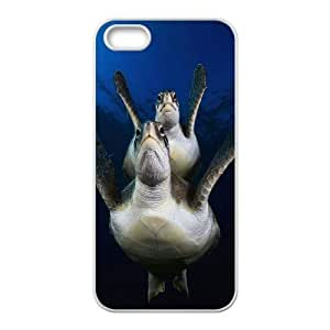 Cool Painting Sea Turtle Classic Personalized Phone Case for Iphone 5,5S,custom cover case case564929