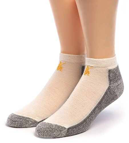 Anklet Wool - Warrior Alpaca Socks - Women's Sport Mini Crew, Alpaca Wool Socks - Anklet with Terry lined Cushion Footbed (Off White/Gray L)