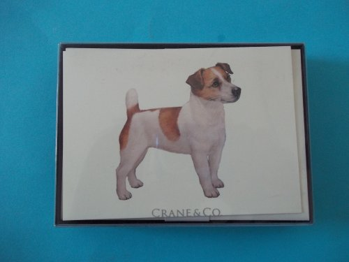Crane SN125 Jack Russel Terrier 90# Natural White Crane's Cover 10 Cards 10 Envelopes 3 15/16'' x 5 9/16'' by Crane & Co.