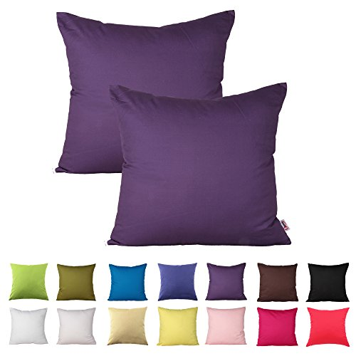 Floral Square Pillow (Queenie® - 2 Pcs Solid Color Cotton Decorative Pillowcase Cushion Cover for Sofa Throw Pillow Case Available in 14 Colors & 5 Sizes (24 X 24 Inch (60 X 60 Cm), Purple))