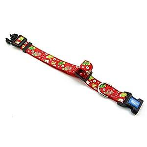 BIG SMILE PAW Nylon Dog Collar Adjustable (L)