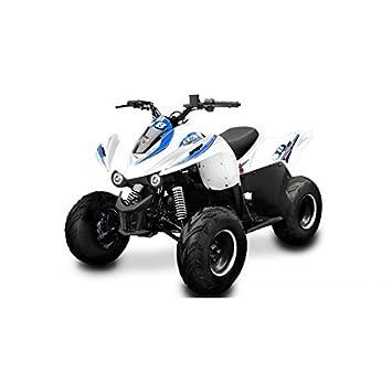 Quad New Big Foot 110 cc Lem Motor - Quad New Big Foot 110 cc blanco azul: Amazon.es: Coche y moto