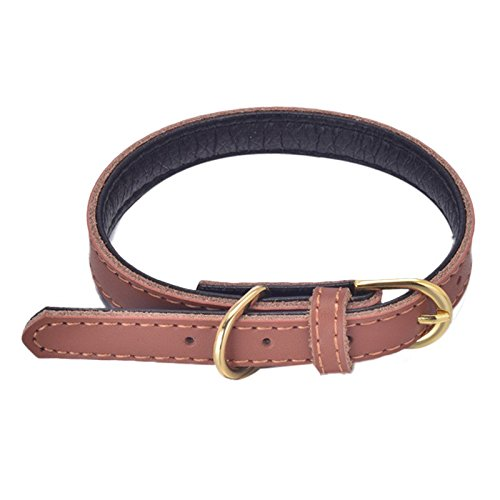 - Voberry Hot Cute Adjustable Pu Leather Dog Puppy Pet Collar Puppy Choker Cat Necklace (Brown, M)