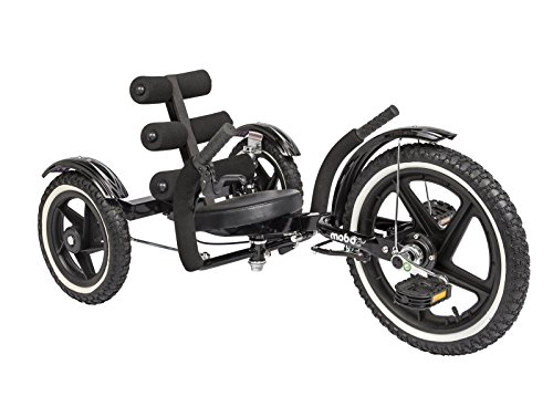 Recumbent Bicycle Wheels (Mobito Sport Recumbent Bicycle)