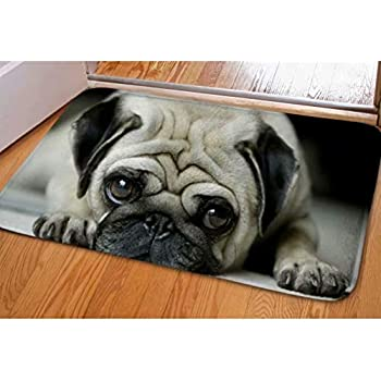 Dellukee Welcome Large Doormats Cute Big Eyes Pug Pattern Indoor Outdoor Funny Non Slip Durable Washable Home Decorative Door Mats Rugs for Entrance Bedroom Bathroom Kitchen, 23 x 16 Inches