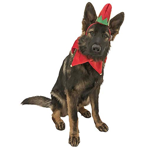 Midlee Elf Dog Hat with Bell Neck Band Dog Costume -