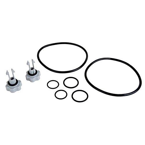 Intex 1500 gal and Below Filter Pump Seals (Combination Air Release Valve)