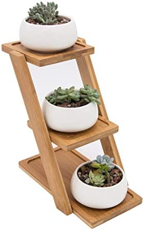 THPLUS 2.5 Inch Round Ceramic Small Tiny Cute Cactus Succulent Planters Pots Containers Flowerpots with Bamboo Tray for Desk Home Kitchen Garden Office Decoration White Set of 3 White