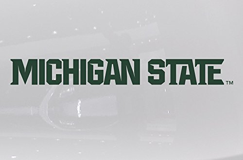 Nudge Printing Michigan State University Athletic Font Vinyl Car Decal Sticker - Green