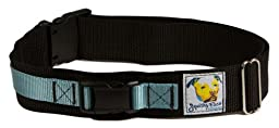 Squishy Face Studio Hands Free Dog Leash Belt, Small/Medium, Ocean Blue