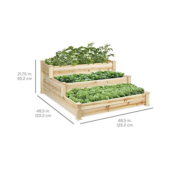 Best Choice Products 3-Tier 4x4ft Elevated Wooden Vegetable Garden Bed Planter Kit w/ No Assembly Required for Outdoor Gardening - Natural 6 STAIR STEP DESIGN: 4x4ft garden bed is designed with 3 open tiers, making it perfect for growing plants and vegetables ranging from short to medium and tall heights QUALITY PLANT GROWTH: Separated design gives your plants ample space between each other to grow to their full potential DURABLE COMPOSITION: Made of 100% fir wood that is 0.5 inches thick for a gardening planter that is built to last through the seasons