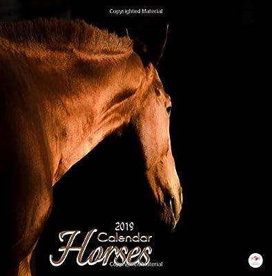 2019 Horses Mini Calendar