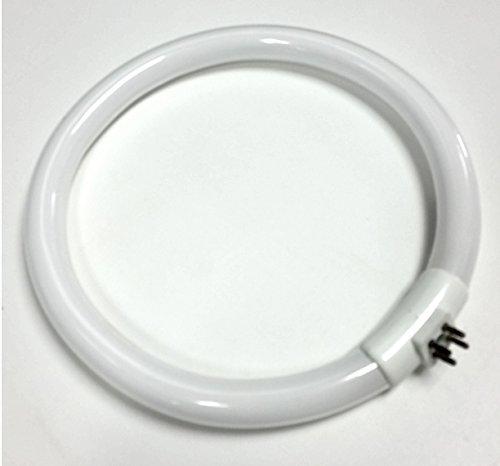 FC22T5/865 Outside PINS 22W 22 Watt 7.25 inch Diameter Circular Fluorescent lamp/Bulb for Magnifying ()