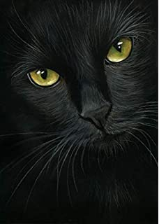 LIPHISFUN 5D DIY Diamond Painting Full Drill for Adults Resin Square Rhinestones Patsed Unfinished Cross Stitch Home Decor Best Gift Black Cat 12x12 inches