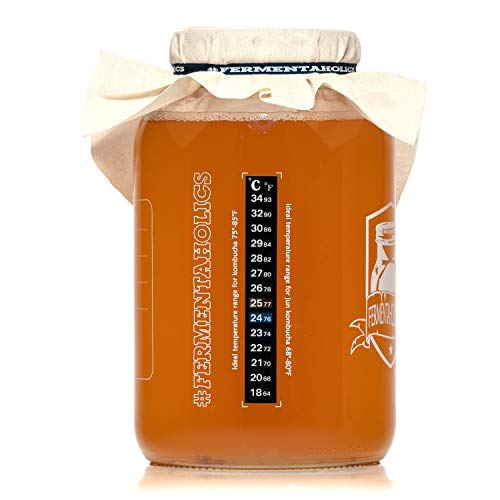Fermentaholics Kombucha SCOBY (starter culture) + 1-Gallon Glass Fermenting Jar with Breathable Cover + Rubber Band + Adhesive Thermometer - Brew kombucha at Home - Detailed Instructions Included by Fermentaholics (Image #4)