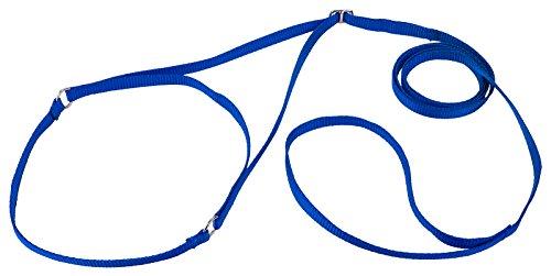 Country Brook Design Nylon Martingale Dog Show Lead - Blue