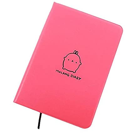 amazon com haiker pink molang rabbit diary any year planner