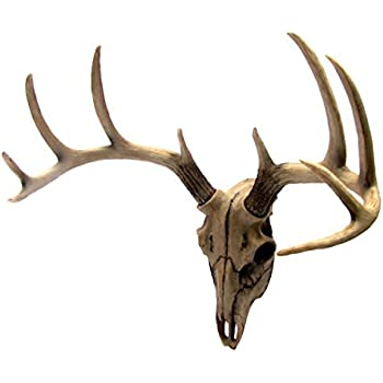 Exceptionnel Buck Head Wall Mount Resin Deer Skull Antler Rack Bust Hunting Cabin Or  Lodge Decor By