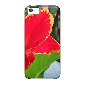 New Design Shatterproof Case For Iphone 5c (canna 'lucifer')