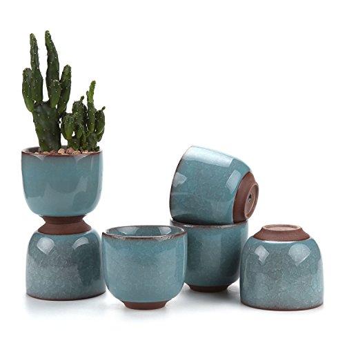 Light Raised Planter (T4U 2.5 Inch Ceramic Ice Crack Zisha Raised Serial succulent Plant Pot/Cactus Plant Pot Flower Pot/Container/Planter Light Blue Package 1 Pack of 6)