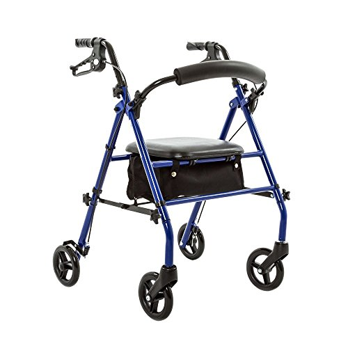 Silver Spring Steel Rollator with 6'' wheels by Silver Spring