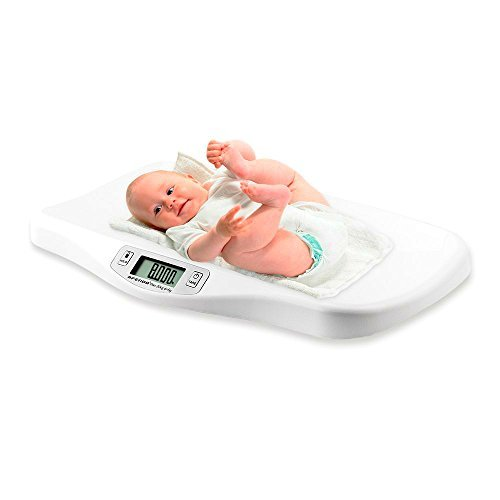 weigh master scale - 3