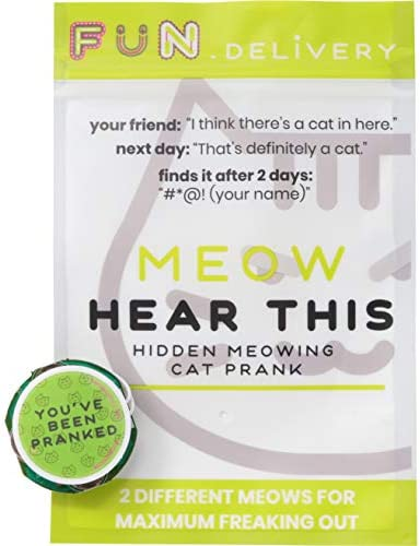 FUN delivery Meow Hear This product image