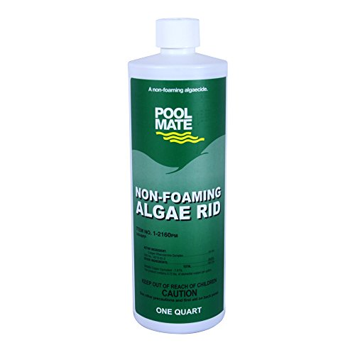 Pool Mate 1-2160 Non-Foaming Algae Rid Swimming Pool Algaecide, 1-Quart (Best Algaecide For Gunite Pools)