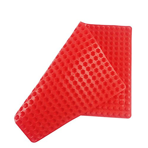 Resistant Non stick Pyramid Silicone Roasting product image