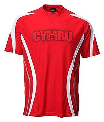 New Childrens Boys Wales Welsh Cymru Football Sportsware T Shirt Top (UK  Medium 7- 81c07743c