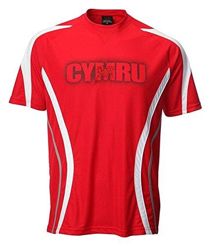 New Childrens Boys Wales Welsh Cymru Football Sportsware T Shirt Top