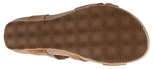Taos Footwear Camel Sandal Women's Universe xa0wqY7a