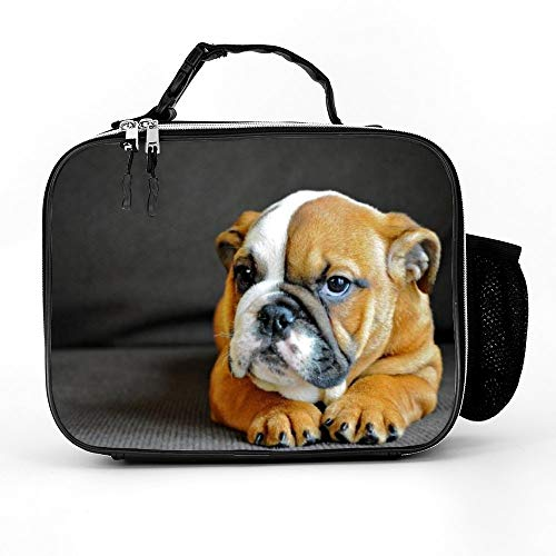 Athena Carroll LunchBags Meal Bag Detachable Leather Meal Pack Dog Dog Breed Canidae Mammal Old English Bulldog Bulldog Toy Bulldog British Bulldogs Olde English B color48 21279cm