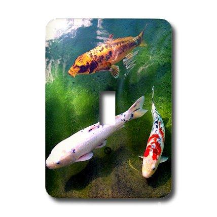 """3dRose lsp_2879_1""""Chinese Koi Carp Fish"""" Single Toggle Switch"""