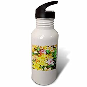 3dRose Taiche - Watercolor Painting - Lilies - Lilies Love and Light - Flip Straw 21oz Water Bottle (wb_275679_2)