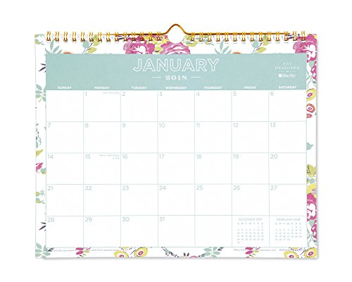 "Day Designer for Blue Sky 2018 Monthly Wall Calendar, Twin-Wire Binding, 11"" x 8.75"", Peyton White"
