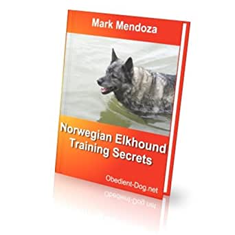 Norwegian Elkhound Tra...