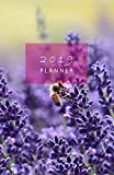 2019 Planner: Monthly and Weekly Diary for a successful year. With Year at a glance, Monthly calendars, Weekly planner, Schedules, Notes, Sections for ... Sunday start week. (Bee on lavender cover). by Archery Notebooks